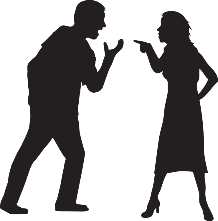 A man and a woman shown in silhouette, the woman is pointing in an accusatory way, the man is shouting, both are clearly angry.